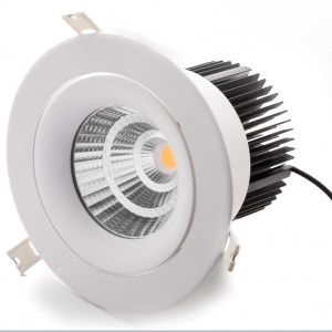 15W Orientable LED Downlight
