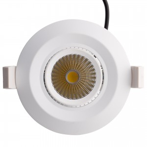 20W Orientable LED Downlight